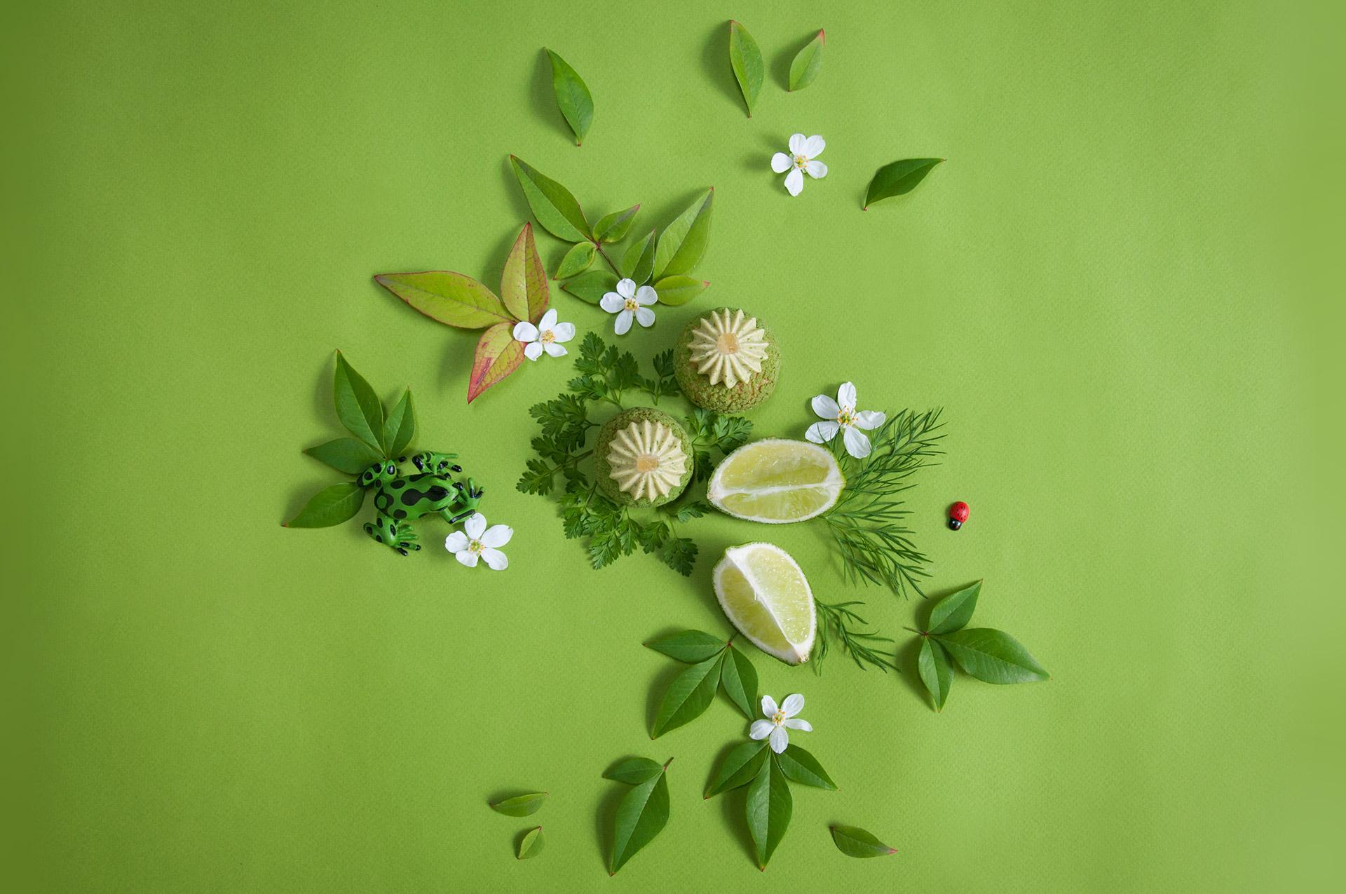 vert de printemps